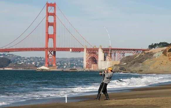 best beaches in northern California for swimming, cool beaches in northern California