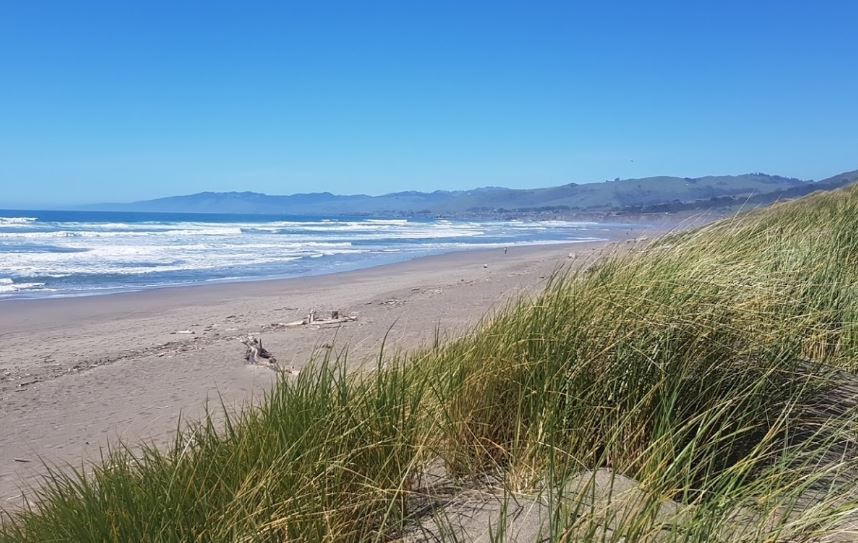 Best Beaches in Northern California