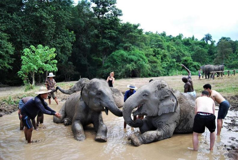 best things to do in Thailand, what to do in Thailand , Thailand activities