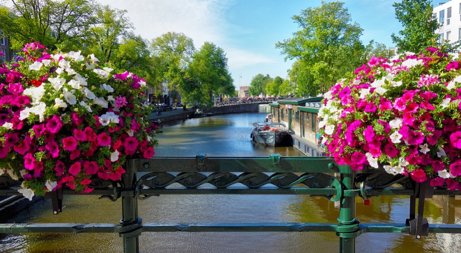 best places for Instagram photos in Amsterdam, best places for Instagram photos in Amsterdam, most beautiful places for Instagram in Amsterdam