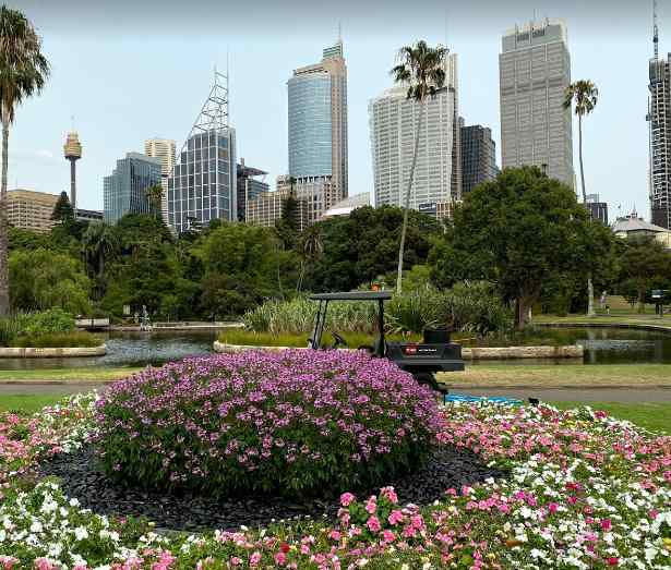 things Sydney is famous for, Sydney popular, Sydney popular to visit, why Sydney is popular