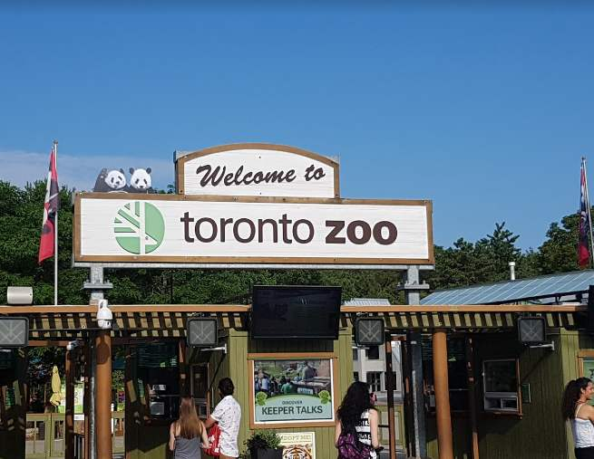 What is Toronto is popular for, Toronto to worth-visit, Toronto well-known for, famous food in Toronto