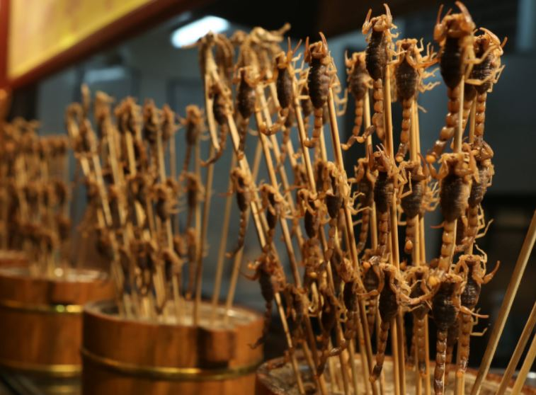 unusual foods in china, weird foods in china, weird foods from china, weird foods china eats, strange foods of china, weirdest foods to eat in china, weirdest foods in china, strange foods from china, strange street foods in China,
