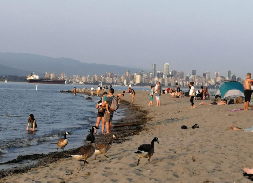Best Beaches in Vancouver, Beaches to visit near in Vancouver