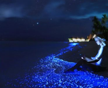 top summer holiday destination in the Maldives, popular destination to visit in the Maldives for summer, places in the Maldives for summer trips