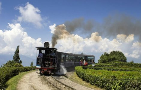 Popular Tourist Places to See Darjeeling in June